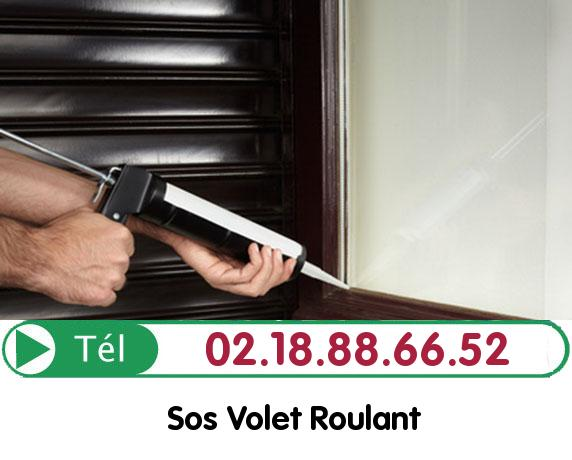 Volet Roulant Tigy 45510